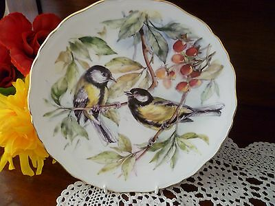 Royal Albert Garden Birds Great Tit No 3 In A Series Of 4 Plate  Made In England