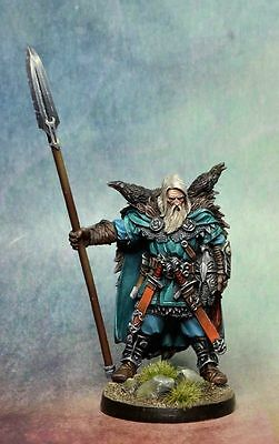 Viking  / Blood Rage  / CMON /  Frostgrave /  AD&D /  viking with crows / raven