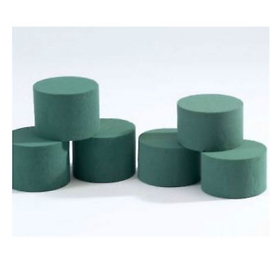 Oasis Wet Foam Cylinders floral foam For Fresh Flowers - va amounts 8cm x 5cm