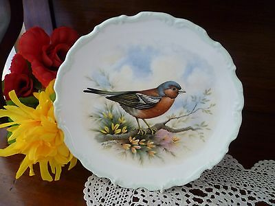 Royal Albert Woodlands Bird Collection Chaffinch  Plate  Made In England