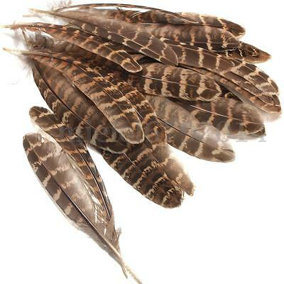 """50Pcs 5""""-6'' Natural Hen Pheasant Wing Feathers Hair Hat Costume Art Craft Decor"""