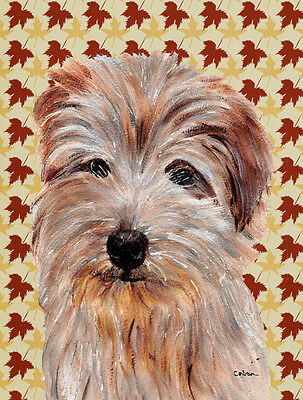 Carolines Treasures  SC9688GF Norfolk Terrier Fall Leaves Flag Garden Size