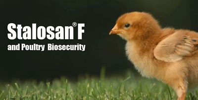 New Stalosan F Disinfectant Powder / Chicken Coops /Farms/ Horse Stables - PINK