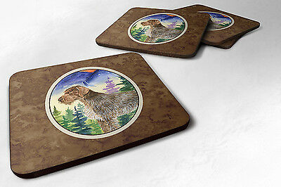 Carolines Treasures  SS8226FC Set of 4 German Wirehaired Pointer Foam Coasters