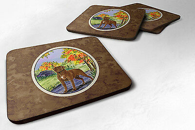Carolines Treasures  SS8427FC Set of 4 Chesapeake Bay Retriever Foam Coasters