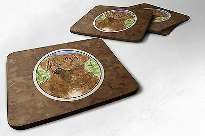 Carolines Treasures  SS8933FC Set of 4 Chesapeake Bay Retriever Foam Coasters