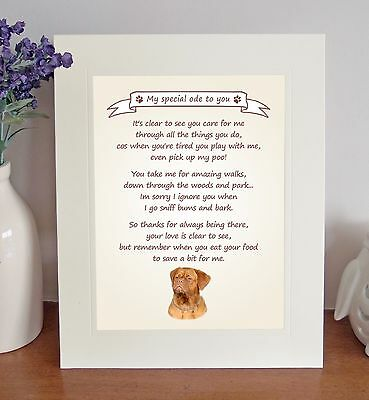 Dogue de Bordeaux Thank You FROM THE DOG Poem 8 x 10 Picture/10x8 Print Fun Gift