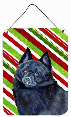 Schipperke Candy Cane Holiday Christmas Wall or Door Hanging Prints