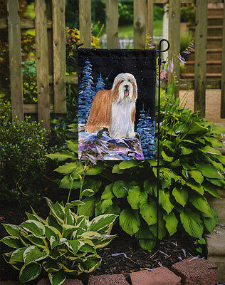 Carolines Treasures  SS8451GF Starry Night Bearded Collie Flag Garden Size