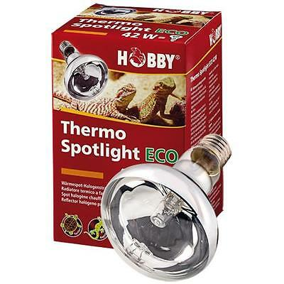 Hobby Thermo Spotlight Eco 70 Watt