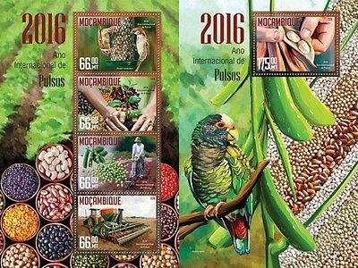 Z08 IMPERFORATED MOZ16214ab MOZAMBIQUE 2016 Year of Pulse MNH Set