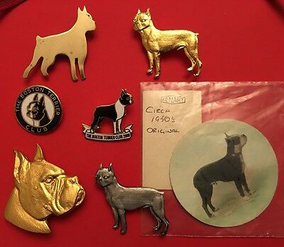 Vintage ORIGINAL BOSTON TERRIER DOG CLUB 6 Piece Brooch,Badge,Pin,picture Lot