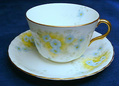 Antique Doulton Burslem C6672 Cup and Saucer Made in England China 1894-95 Duo