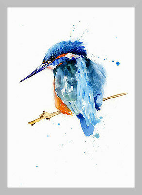 HELEN Limited Print of my KINGFISHER watercolour painting
