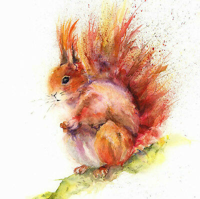 HELEN ROSE Limited Print of my SQUIRREL watercolour painting