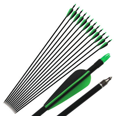 """12Pcs 33"""" Screw On/off Archery Hunting Target Fiberglass Arrows For Compound Bow"""