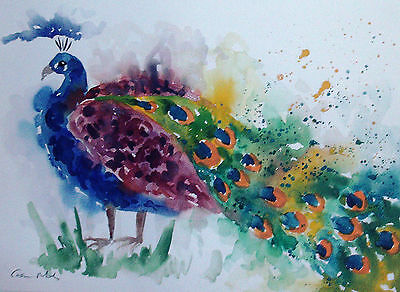 Abstract Colourful Peacock Original watercolour painting Size A3 Casimira Mostyn