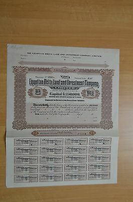 Egyptian Delta Land and Investment Co. Ltd 25 Specimen Bearer Warrants