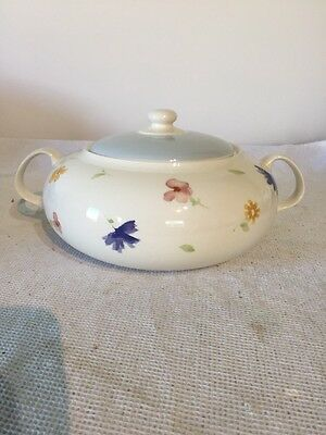 Royal Stafford Water Colour Lidded Tureen Display Only