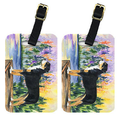 Carolines Treasures  SS8160BT Pair of 2 Greater Swiss Mountain Dog Luggage Tags
