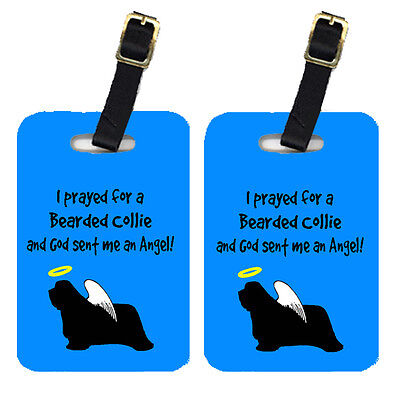 Carolines Treasures  AN1112BT Pair of 2 Bearded Collie Luggage Tags