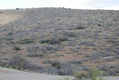 ARIZONA LAND for sale in Spring Valley AZ 1.66 ACRES