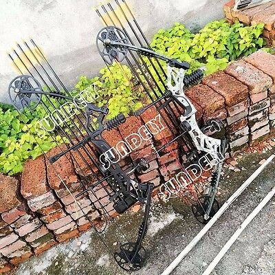 SUNDELY 30-70lbs Black Compound Bow Left Right Hand Archery Hunting Target Bow