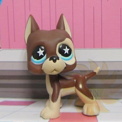 Littlest Pet Shop Animal Collection LPS Child Toy #817 Star Great Dane Puggy Dog
