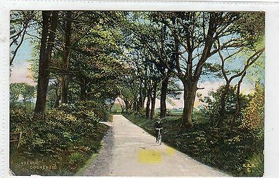 AVENUE, COCKENZIE: East Lothian postcard (C4855).