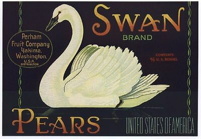 1940s Swan Bird Swan Pear Crate Label