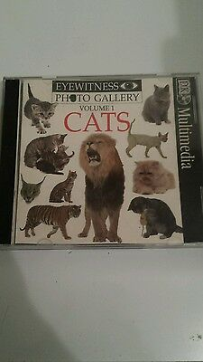 PC Eye Witness Photo Gallery Vol 1 Cats