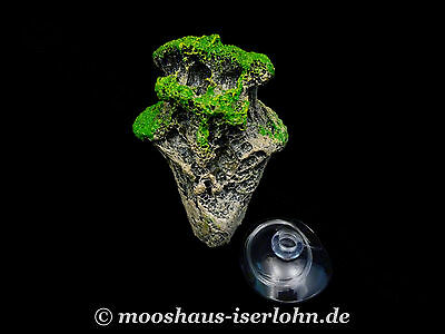 Floating Rock schwebender Stein Avatar Felsen Aquarium Dekoration