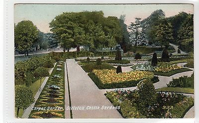 CARPET BORDER, DIRLETON CASTLE GARDENS: East Lothian postcard (C9972)