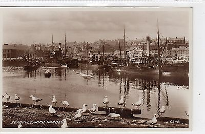 THE HARBOUR, WICK: Caithness postcard (C8103)