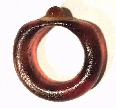 Ancient Egyptian Glass ring.