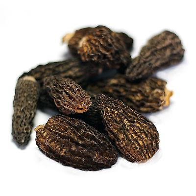 Smoked Dried Morels - 1lb (454g) - Canadian Wild Mushrooms - Gourmet Quality!