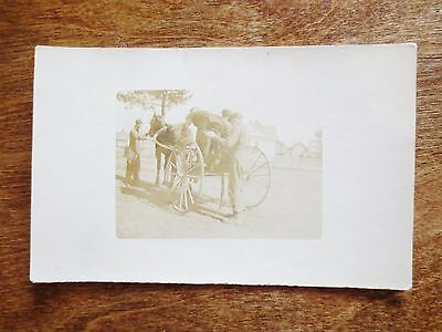 Early 1900s Farm Scene View Horse Buggy Real Photograph Postcard Unposted