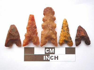 Neolithic Arrowheads x 5, Eiffel / Moroccan Points, Genuine - 4000BC  (Z031)
