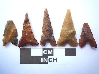 Neolithic Arrowheads x 5, Eiffel / Moroccan Points, Genuine - 4000BC  (T043)