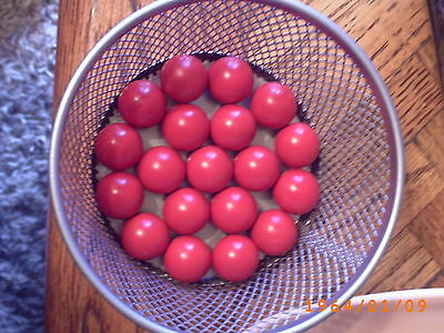50 MB68P Rubber Coated Playing Marbles / No Bull, Breaker balls,