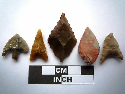 5 x High Quality Neolithic Arrowheads - 5 Different Styles - 4000BC - (K075)