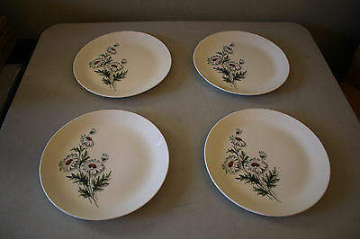 Set of 4 Fascination Dinner Plates Shasta Daisy by Universal Potteries