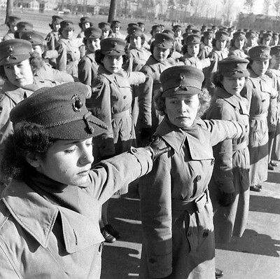 WW2 Photo WWII  Female US Marines Form Up For Inspection  MCWR 1944  USMC / 1465