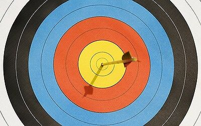 Official World Archery FITA 40cm Heavy Laminated Target Faces. Roll of 10 Sheets