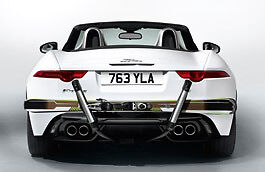 Genuine, EX DEMO F - Type Rear Mounted Ski Carrier **Save £575** (T2R13769)