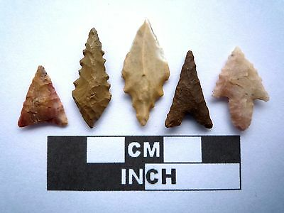 5 x High Quality Neolithic Arrowheads - 4000BC - (K008)