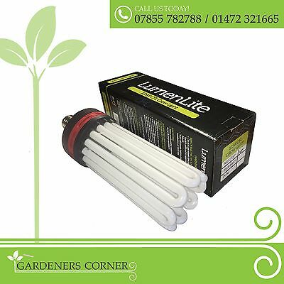 Hydroponic RED spectrum 125 150 200 250 300w CFL Light Bulb Indoor Grow Tent UK