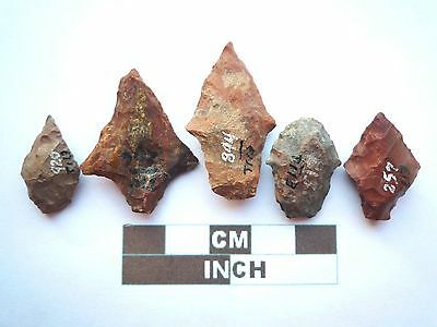 Native American Arrowheads x 5, Genuine Archaic Artifacts, 1000BC-8000BC (Y010)