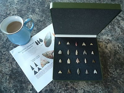 20 x Quality Miniature Neolithic Arrowheads in Display Case - 4000BC - (W029)