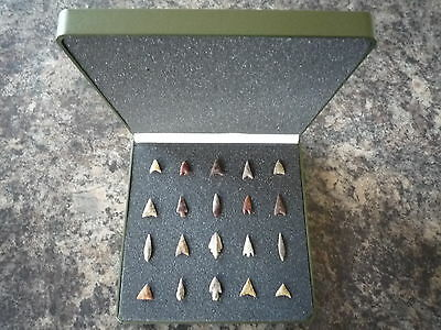 20 x Quality Neolithic Arrowheads in Display Case - 4000BC - (X064)